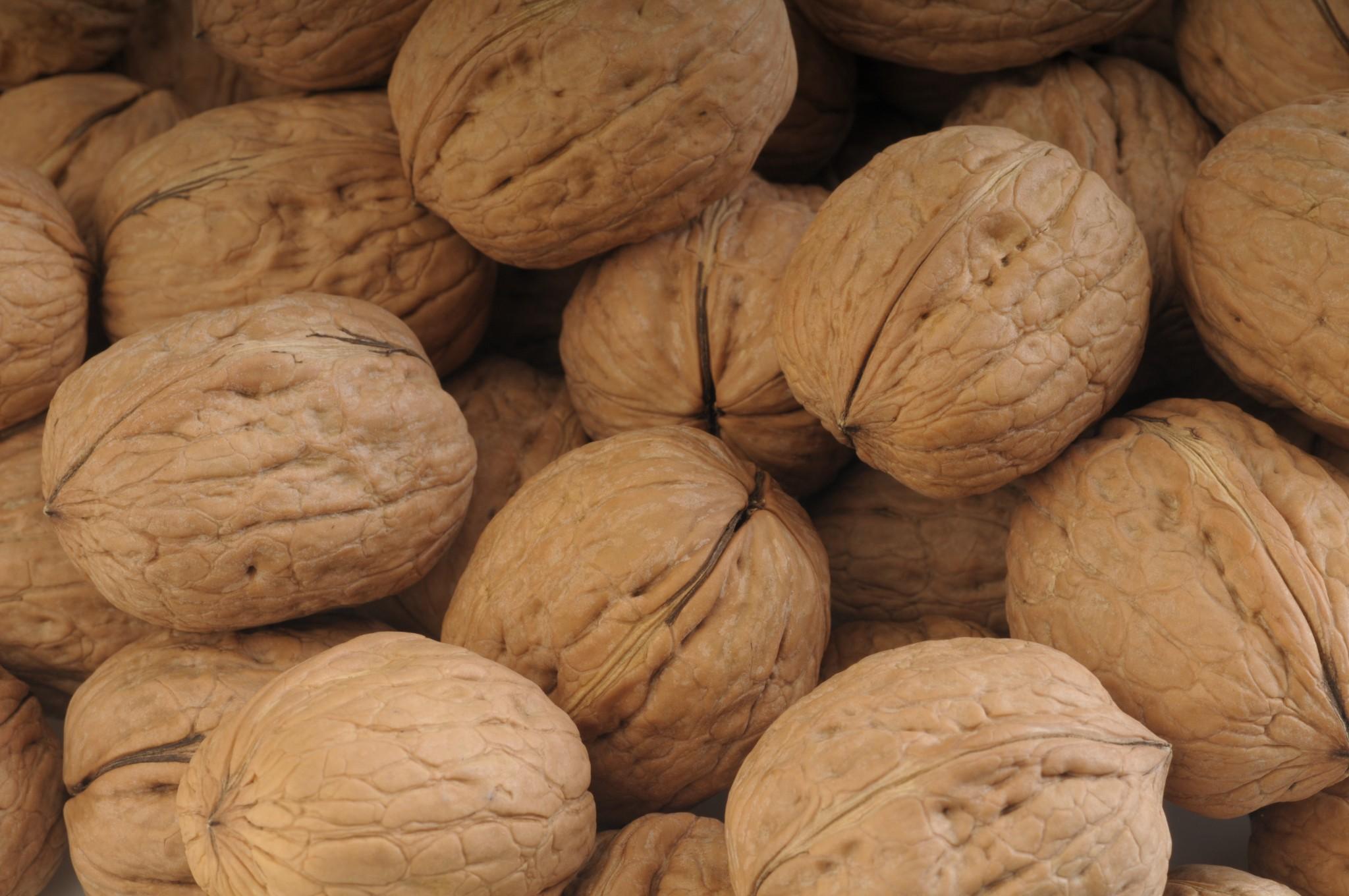 Nueces chilenas presentan un crecimiento explosivo en India