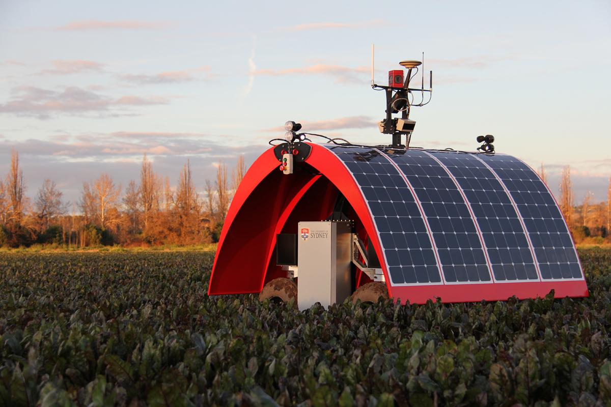 Diseñan un robot con energía solar para cultivar hortalizas