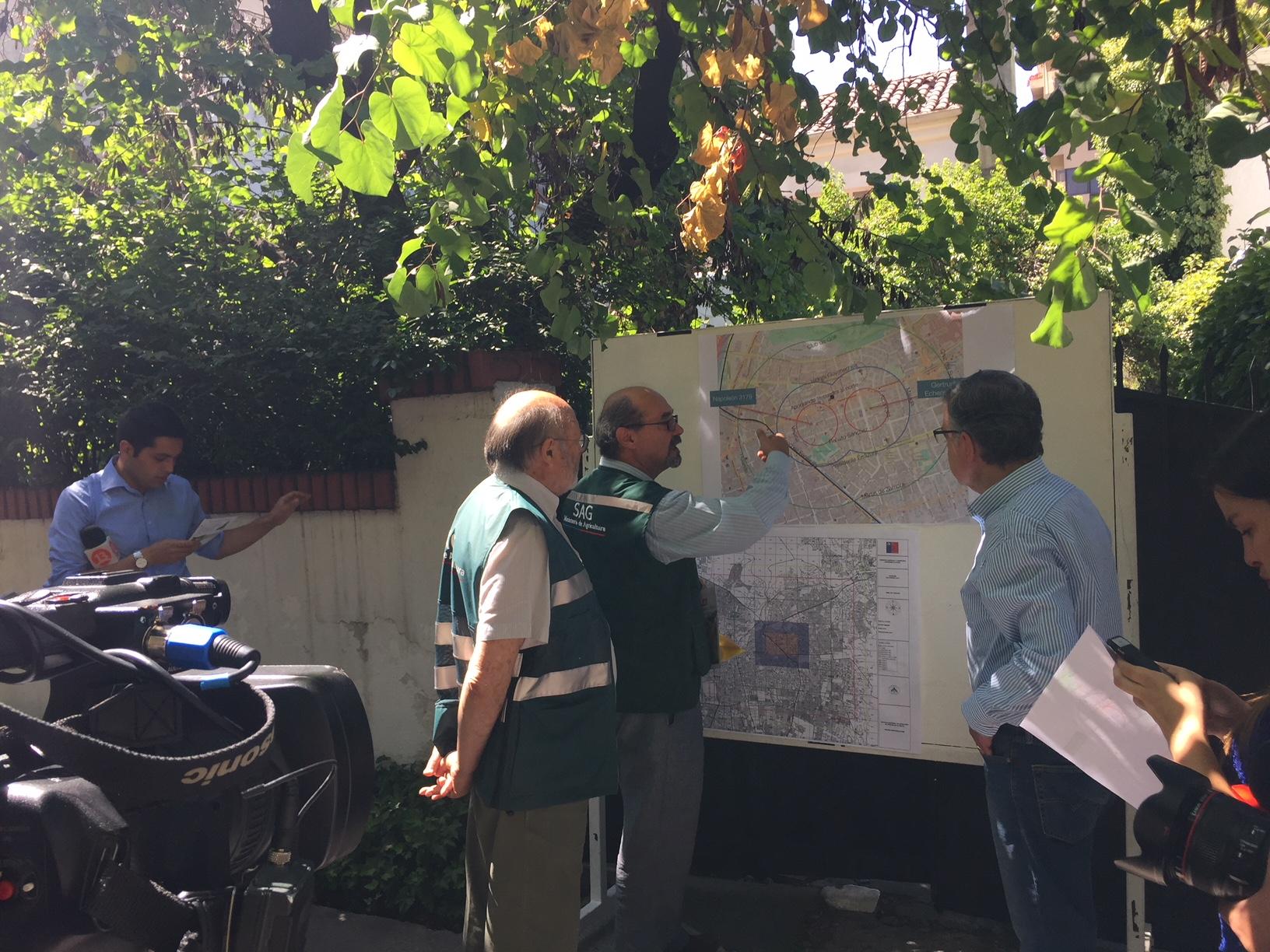 SAG y municipio de Las Condes trabajan para controlar mosca de la fruta
