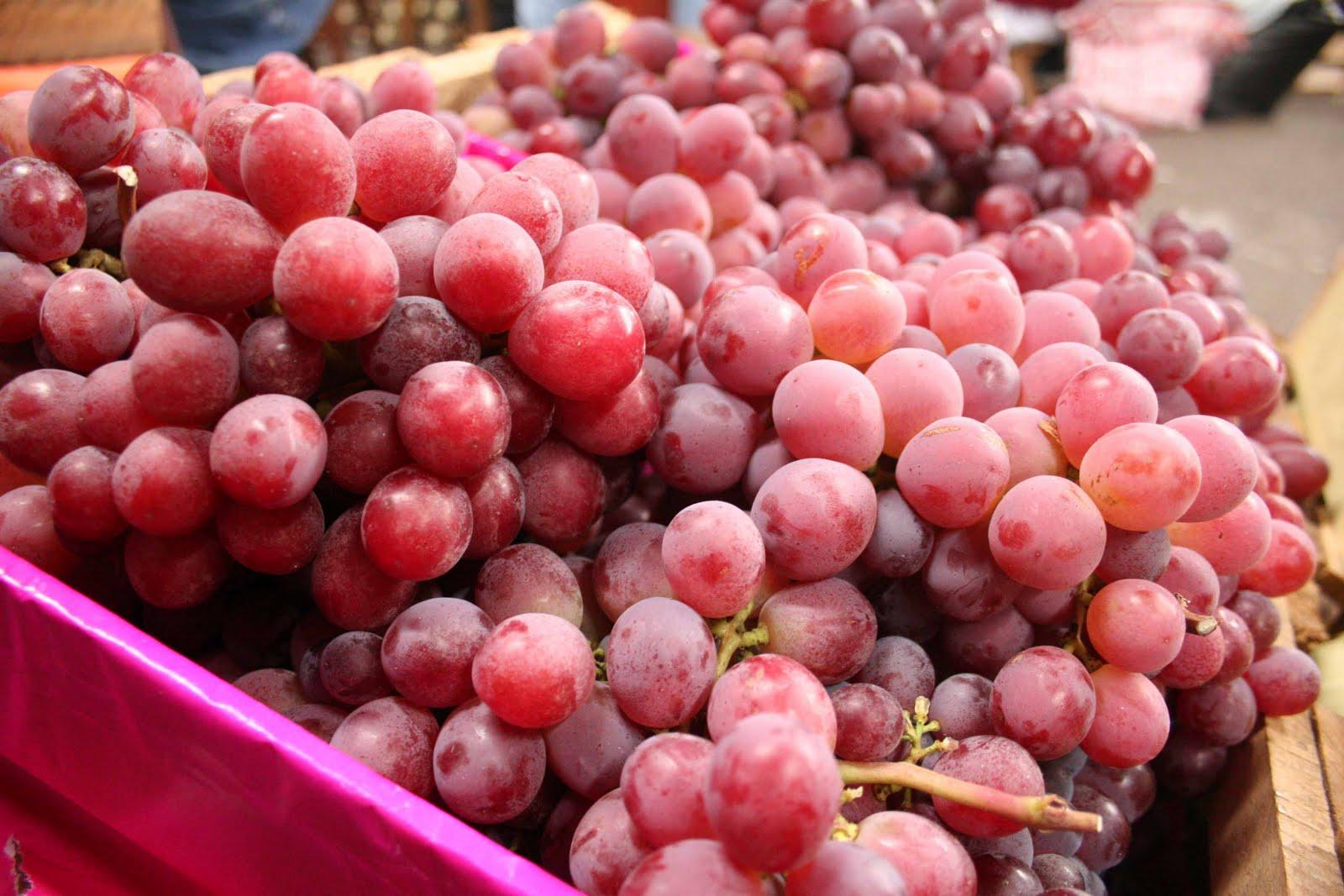 Productores de uva de mesa iniciaron cosecha 2017-2018