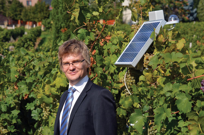 SmartVineyard: una nube virtual para proteger los viñedos de las plagas