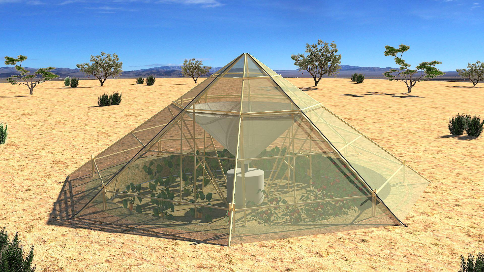 Un invernadero que logra hacer crecer plantas en el desierto