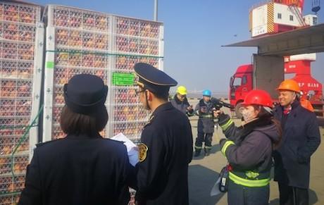 Fruta chilena llega a Shanghái en el primer barco chárter