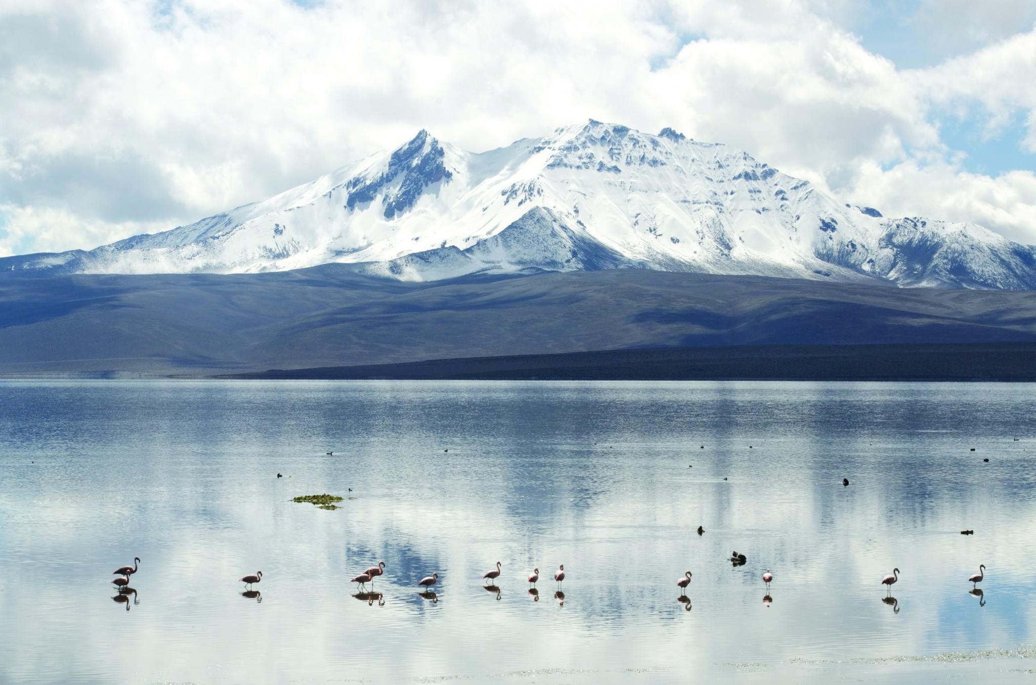 Donde nace el agro chileno