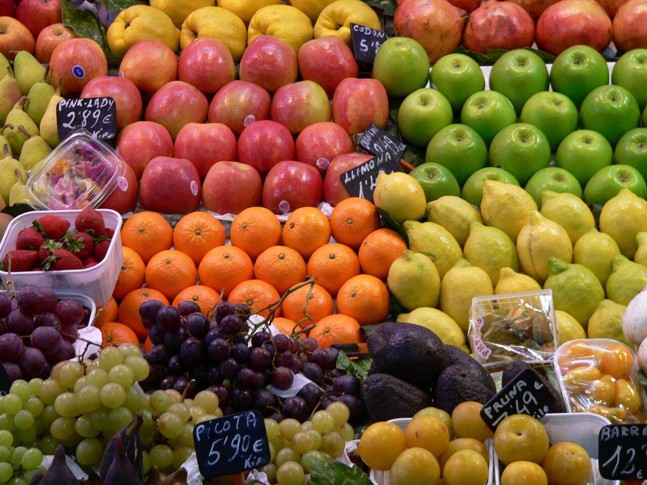 100 ideas para convertir a Chile en una potencia alimentaria al 2030