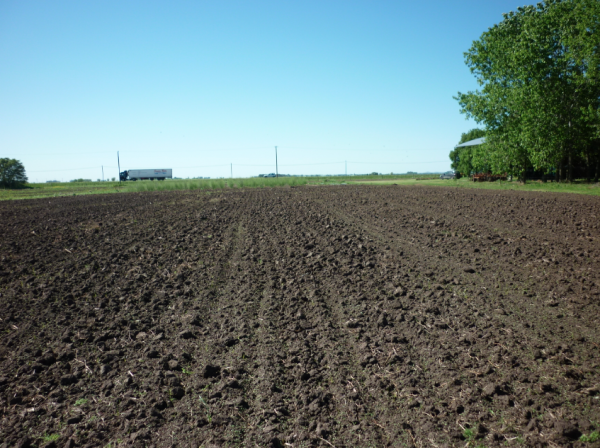 Una APP mide las deficiencias nutricionales del cultivo