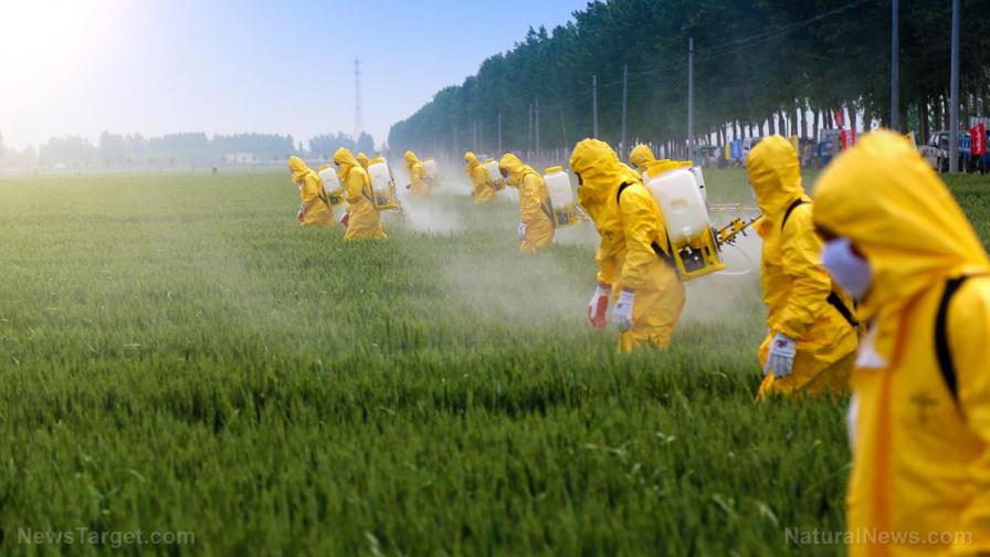 Curso aplicadores de pesticidas con reconocimiento SAG
