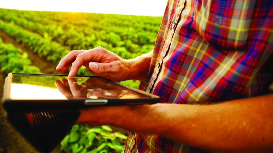 Ecosistemas agrícola y digital