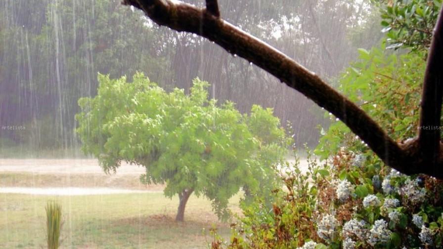 Lo positivo y negativo de las lluvias