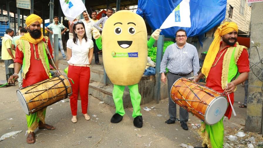 Kiwi chileno será promocionado a través de E-Commerce en India