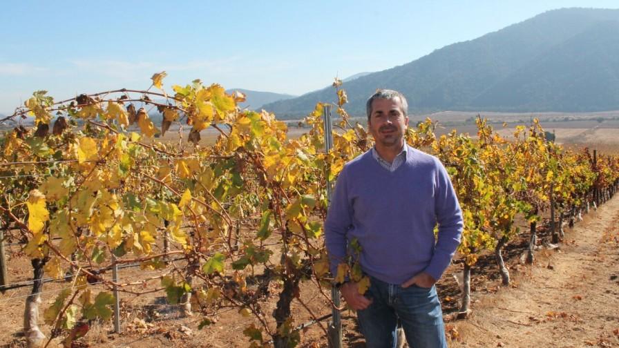 Viña Veramonte: Un terroir que diferencia