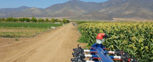 Centro de Transferencia en Riego busca ser un referente para el agro
