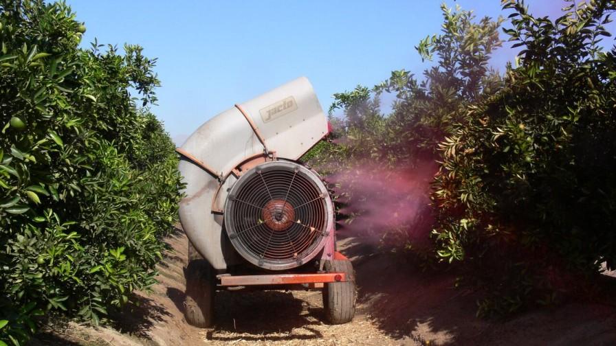 ¿Cuál es el correcto manejo de pulverizadores de plaguicidas?