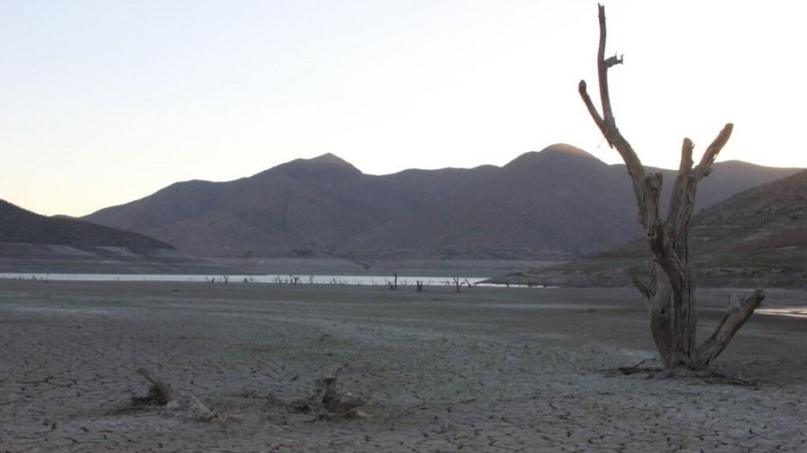 Las caras de la sequía