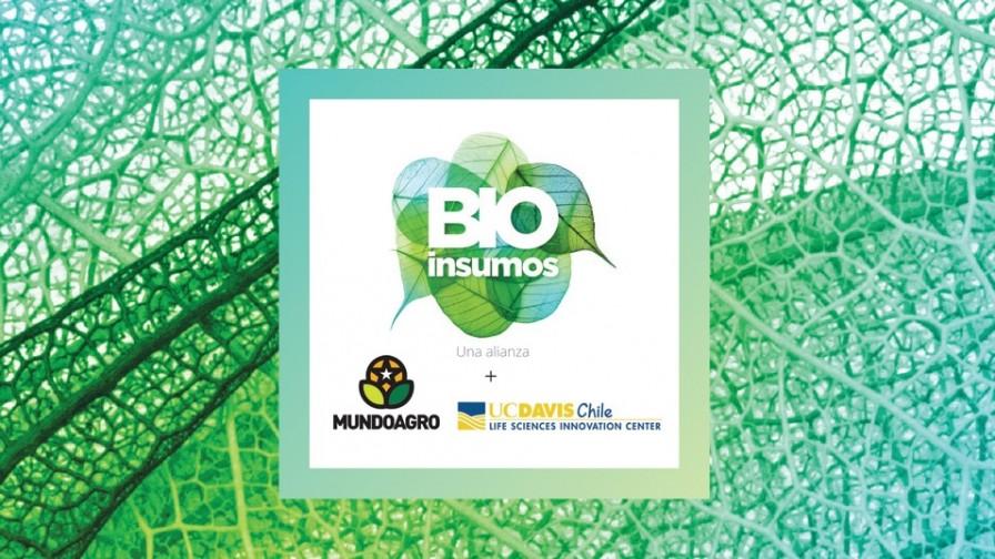 Iniciamos la 1° Cumbre Internacional de Bioinsumos