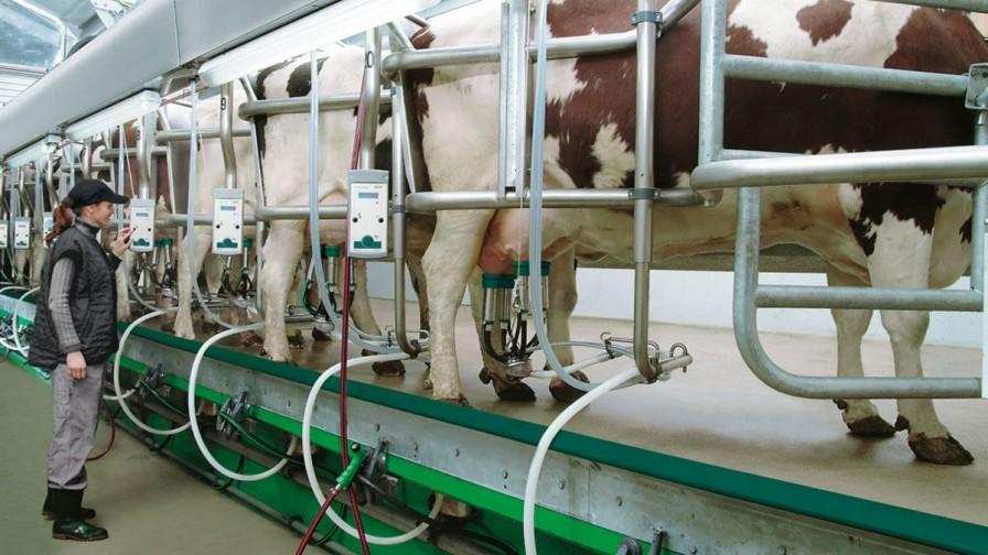 ¿Qué desafíos enfrentan los productores lecheros en las praderas?
