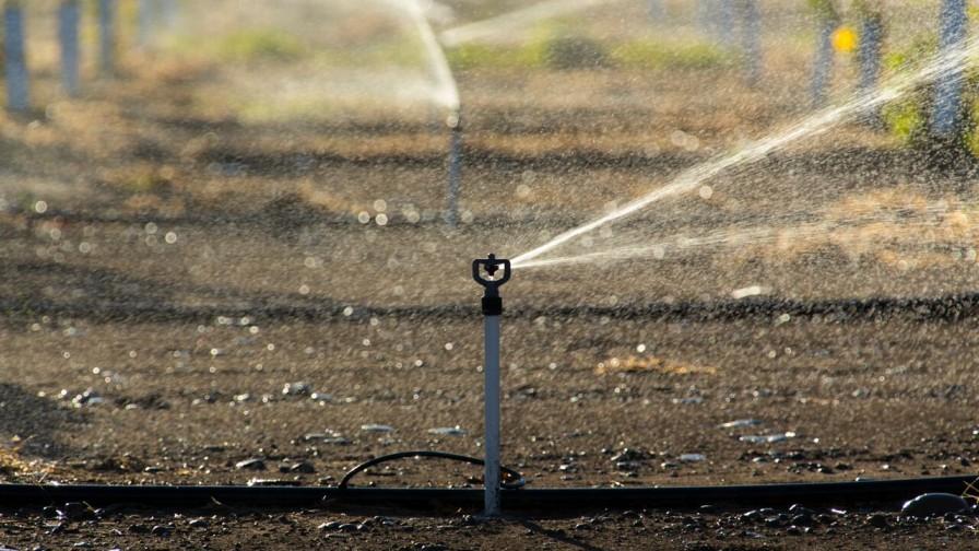 Proyecciones de riego para la región del Maule frente al cambio climático