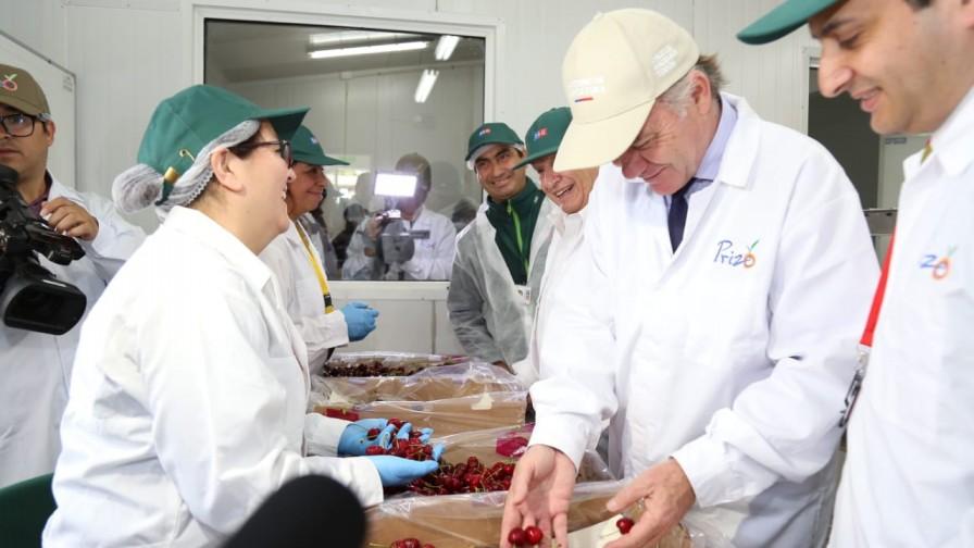 Comienza la temporada de exportaciones frutícolas