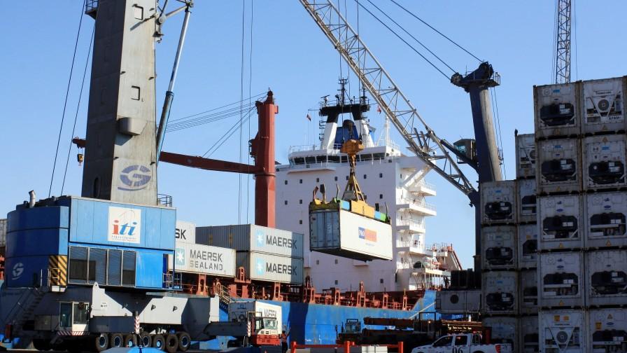 Fruta chilena de exportación es la más afectada por paro portuario
