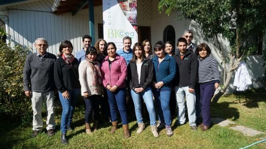Centro de Entomología Aplicada BioCea cumple nueve años