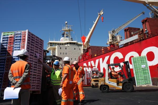 Embarques de fruta fresca desde Valparaíso bajan 90% por paro portuario