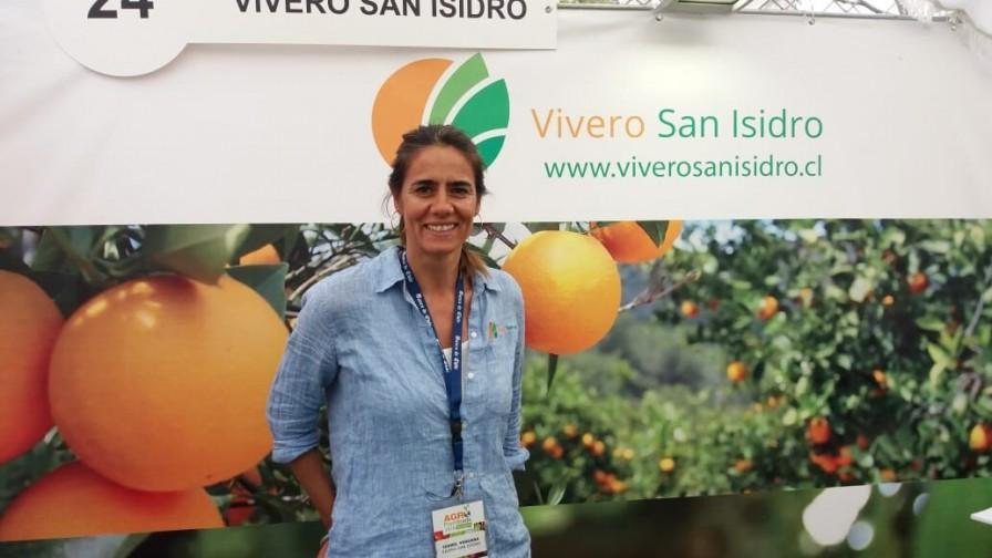 Nace Vivero San Isidro