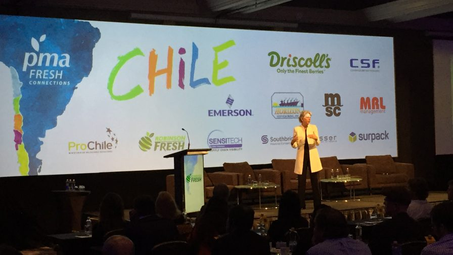 Compradores de industria frutícola mundial revelan desafíos para exportadores chilenos