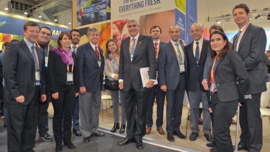Fruit Logística 2019: Crece demanda de fruta fresca chilena en Europa