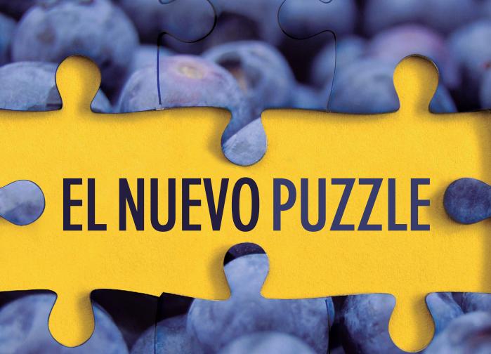 El nuevo puzzle