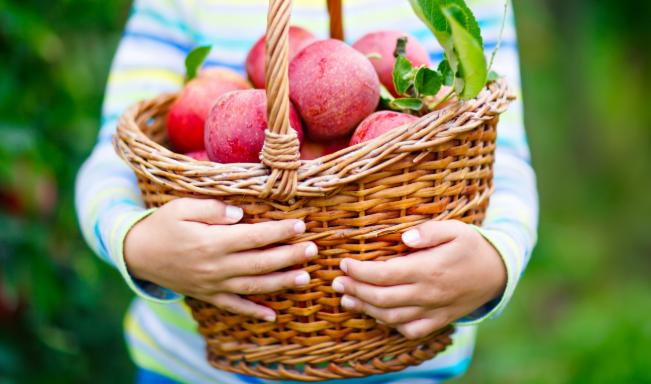 Nueva tecnología permite que frutas y verduras duren el doble