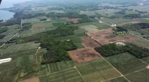 Tres tecnologías disruptivas que están cambiando el rumbo de la agricultura