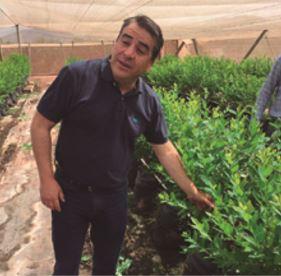 Equipo de Proceed y AMT visitaron huertos orgánicos en maceteros