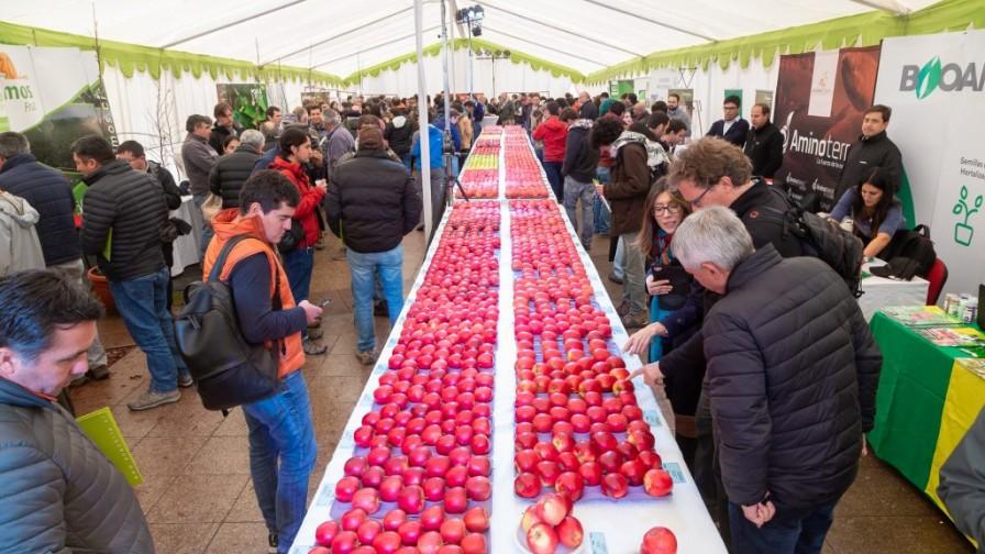 ¡Participa en la 7° PomaExpo! 28 de mayo en Talca