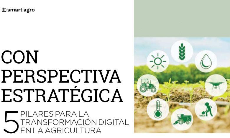 5 pilares para la transformación digital en la agricultura
