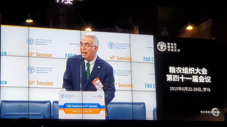 FAO aprueba declarar el 2021 como Año Internacional de las Frutas y las Verduras