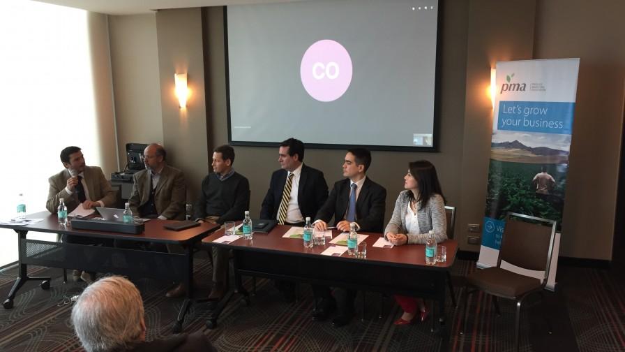 India, Sudeste Asiático y Medio Oriente: las oportunidades para la fruta chilena