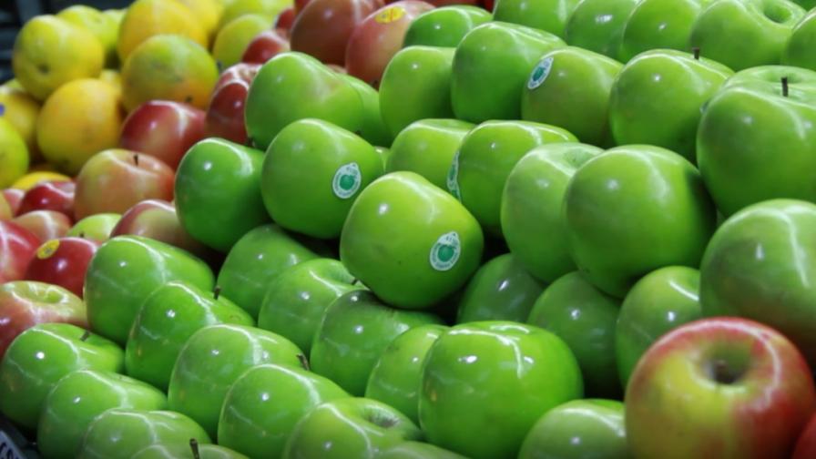 Las estrategias para adoptar en materia de inocuidad alimentaria