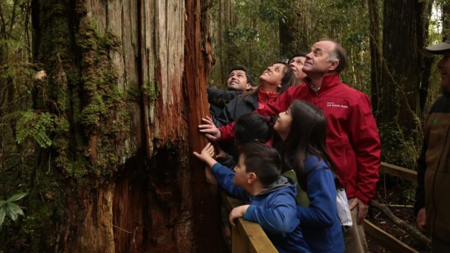 """""""Chile tiene uno de los mejores sistemas de parques del mundo"""" Antonio Walker"""