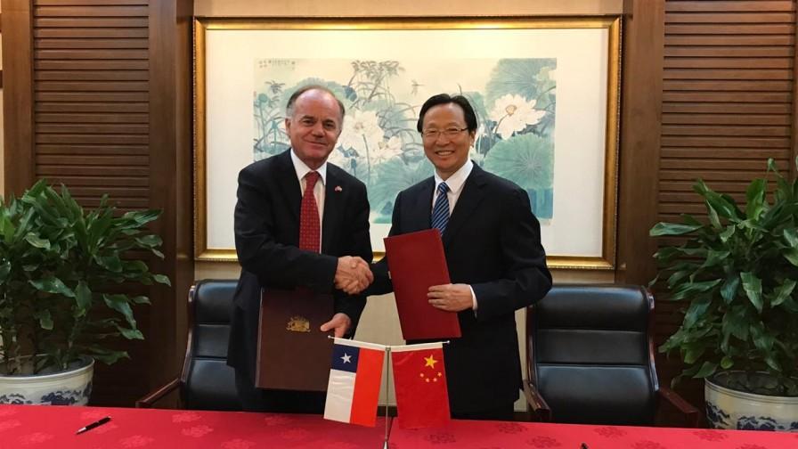 La espera terminó: cítricos chilenos llegarán a China en noviembre