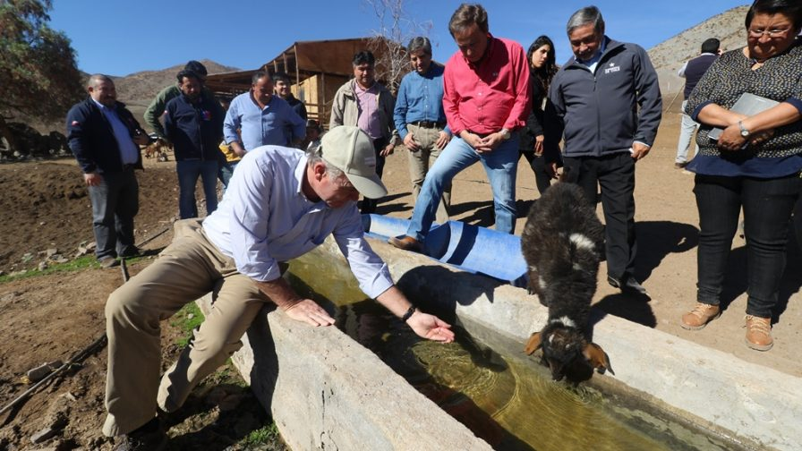 Inicia traslado de animales de pequeños productores producto de la sequía
