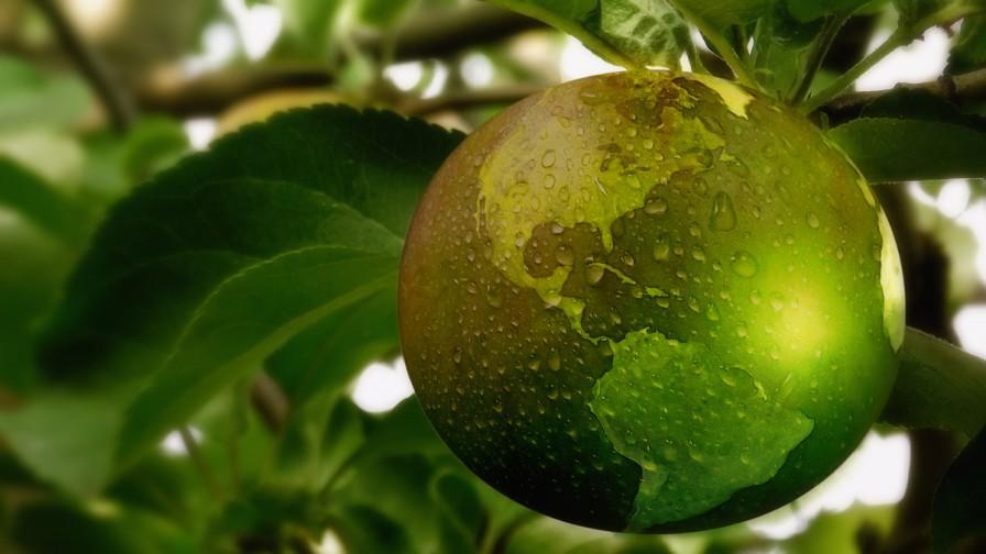 """#Fruittrade2019 de Fedefruta será la primera feria """"Climate Friendly"""" del agro"""