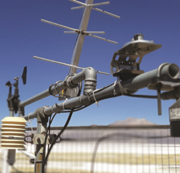 Del laboratorio al campo: Las investigaciones más destacadas del INIA del mes de septiembre