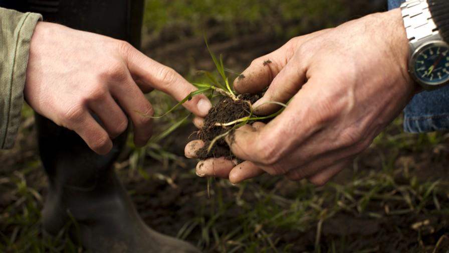 Día Mundial de los Suelos: urge promover buenas prácticas agrícolas para preservar la productividad