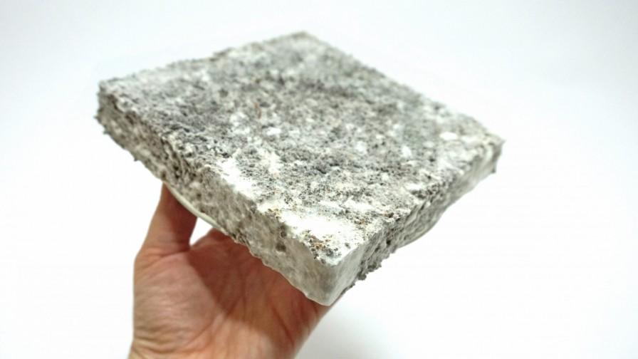 Desarrollan biomaterial que sustituye el plástico con materias primas forestales y hongos