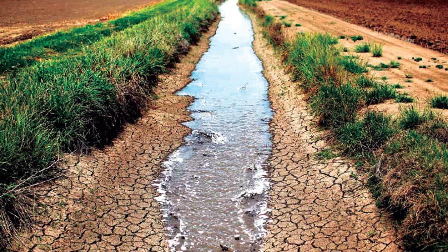 Sequía: la investigación como herramienta para anticipar el problema