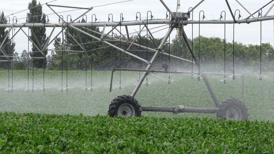 Nascent, la nueva línea de fertilizantes solubles para aumentar el rendimiento de los cultivos