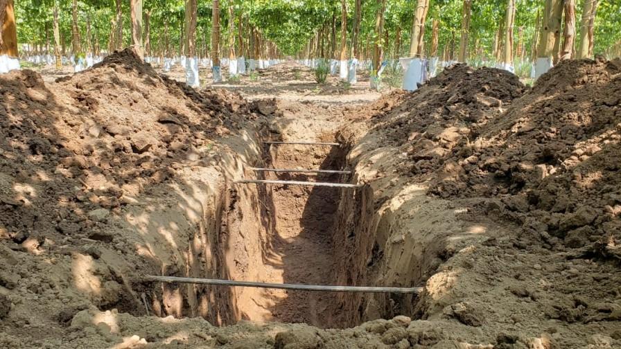 Riego por goteo subterráneo: la nueva tendencia para enfrentar la escasez hídrica