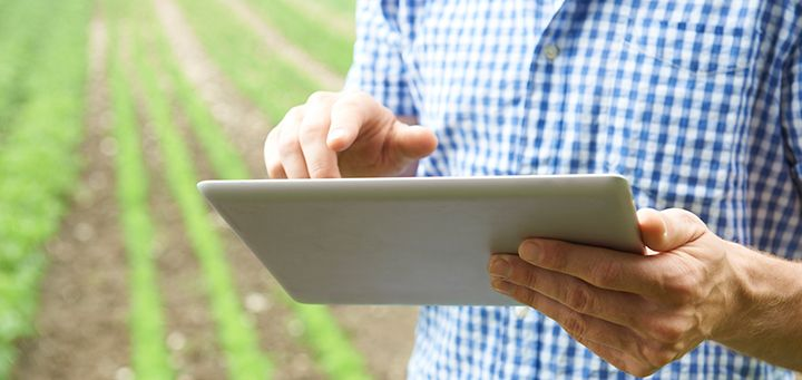 App chilena permite digitalizar y administrar tu empresa agrícola