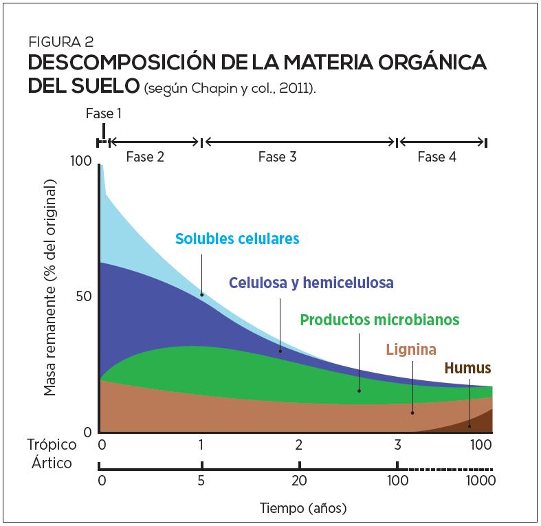 Elementos técnicos sobre la aplicación de materiales orgánicos en el suelo