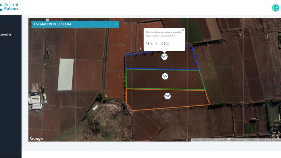 Startup chilena diseña plataforma que permite digitalizar tareas de huertos agrícolas